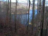 The main channel of French Broad River-( Douglas Lake)