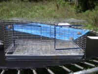 I have two rabbit cages i am looking to sell. They are