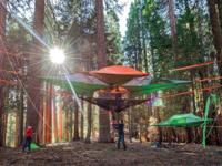 Brand New Stingray tree tent by Tentsile. Suspends