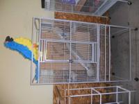 Many very large clean barly used cages for sale, can be