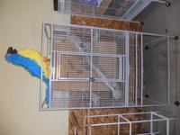 Many huge clean barly made use of cages for sale, can