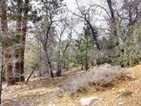 Upper Moonridge Lot with Views! Location: Big Bear