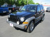 THIS 2006 LIBERTY RENEGADE IS IN GREAT SHAPE AND IT