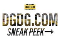 DGDG Certified Used 2013 Dodge Dart SXT/Rallye (FWD,