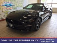 Dare to turn heads in our 2019 Ford Mustang GT Fastback