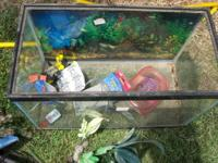This is a 10 gallon aquarium that needs cleaned. It