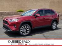 Ruby Flare Pearl 2019 Toyota RAV4 XLE Premium FWD