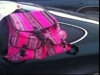 Pink Aztec Backpack: 30$Floral Purple Luggage Bag: