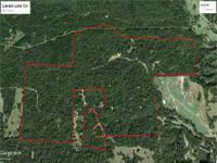 Locust Land Company offers 790+/- acres located between
