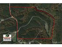 Really secluded riverfront searching and lumber tract,