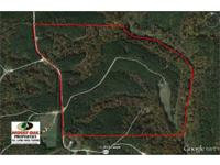 Really secluded riverfront searching and timber system,