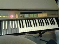 This is an uncommon find a Farfisa Mini Compact Organ