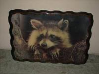 this is an old raccoon picture on solid wood it came