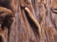 This is a Brown Mink made at Maple Furriers of  Oak