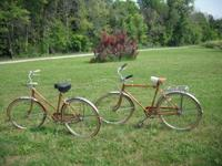 A woman's bicycle and one guy's, matched pair of bikes.