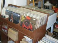 I have a large number of vinyl records. LPs, 45s, &