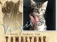 Virgil Earp's story   Zoi's Animal Rescue Save a Life..