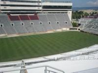 Come out to see the Virginia Tech Hokies play this fall