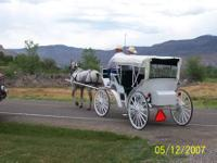 Beautiful vis-a-vis carriage for sale by owner. The