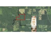 200 acres hardwood/flooded timber tract for sale along