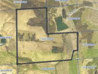115 ACRES MORE OR LESS FARMLAND: Located Just North of