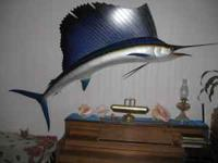 This beautiful mounted sailfish is for sale because we