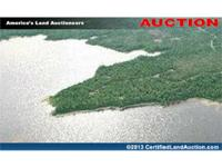 A land auction for a lakefront subdivision in Hancock