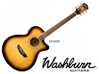 Washburn made the Festival series to deal with the
