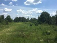 Perfect 40 acre honey hole - this parcel is located