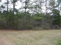 Uncommon find! Unrestricted lot on Lake Wedowee with