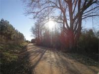 40+/- acres located south of Wedowee. Great location