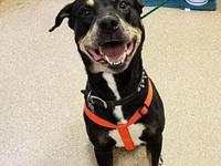 WEISER's story Are you looking for a friendly face to