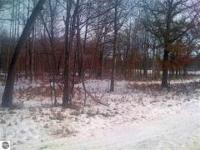 Nice 5-acre Property, Heavily Wooded Parcel With Lots