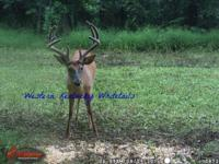 Western Kentucky Whitetails has a limited time only