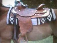 I have two western pleasure saddles, both 16.5 inch.