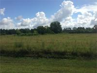 10 acres of cleared land ready for the home and farm in