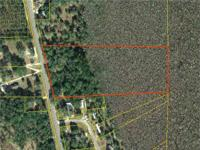 10 acres with mature Live Oaks backing up to thousands