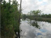 Deep Water Lot with access to the Intracoastal