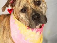 whinney's story Whinney is a sweet girl who enjoys
