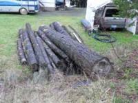 White Oak and Doug fir Firewood Rounds... Ready To Cut
