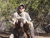 Hog and Exotic Deer/African Game Hunts at DB Hunting