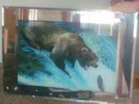 Awesome brown bear digital pic frame. works great..