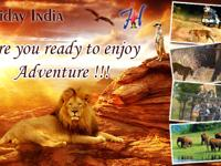 Indian wildlife is one of the major tourist attraction