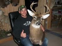 Whitetail Mounts