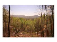 TERRIFIC SOUTHERN VIEW AND A SMALL STREAM 3 acres with