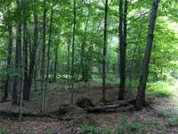 With cherry trees and sugar maples, this wooded acreage