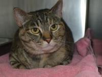 Wilma's story Wilma is an easygoing girl that loves her