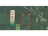 40 acre forest tract with little residence and pond