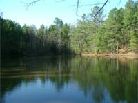 Perfectly wooded 70 acre tract situated simply west of