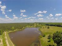 295 Acre Property located in Webster County, MS. The